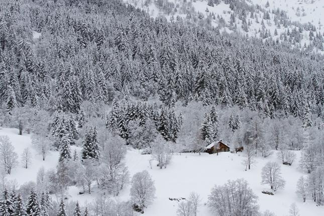 b2ap3_thumbnail_Snowfall-1.jpg